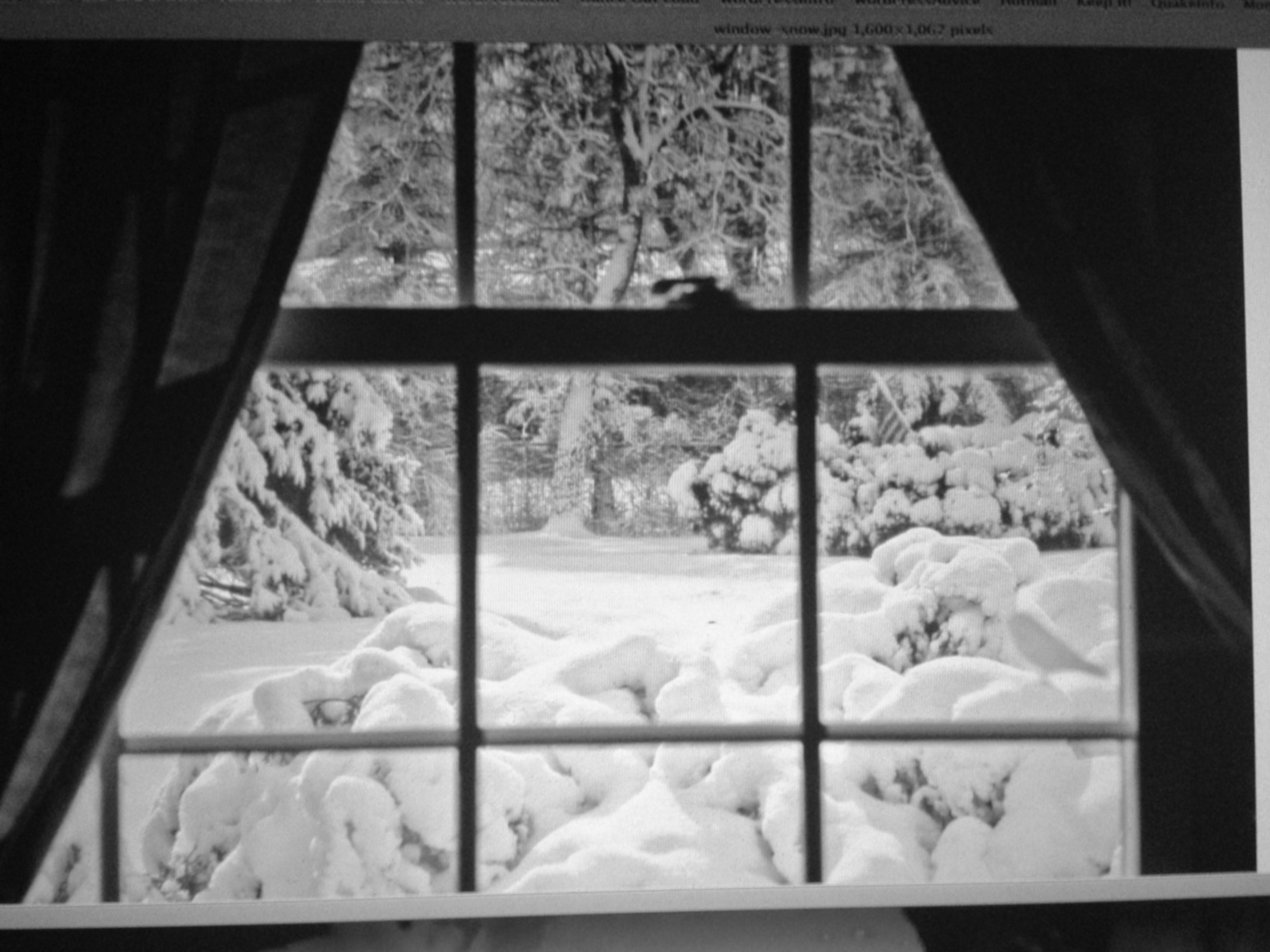 Image result for snow falling through window
