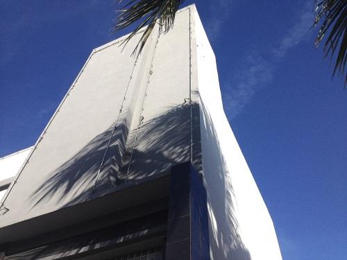 palmtreeshadow4535