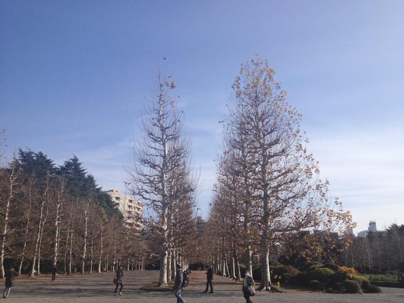 winterboulevardG_4248