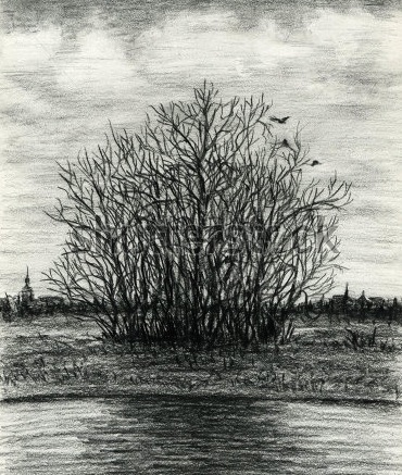 stock-photo-late-autumn-melancholy-landscape-group-of-trees-at-the-lake-coast-charcoal-pencil-96622399