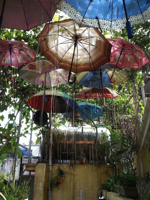 umbrellaz