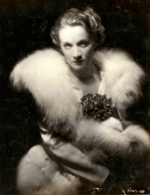 Furs-on-marlene-dietrich