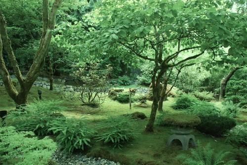 Butchart-Gardens-Japanese-Garden-Forest-1.jpg