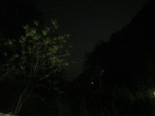 IMG_8106.JPG