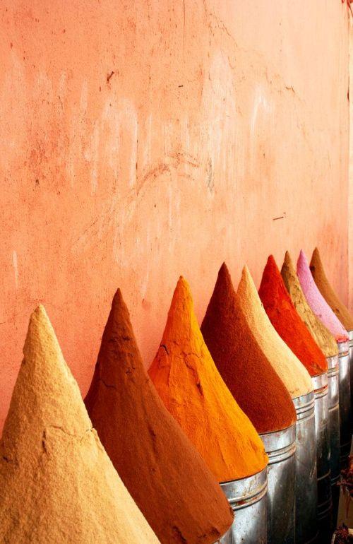 7b0cde71eb3613b663fd66bd29c8cabc--marrakech-morocco-essaouira