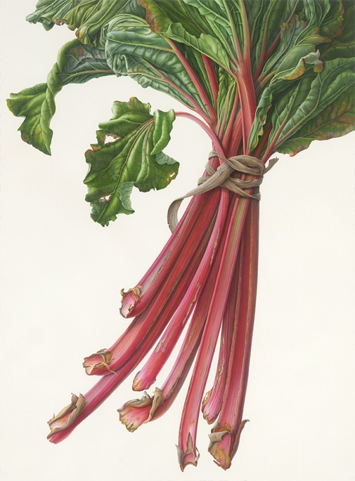 bunch_rhubarb-entry.jpg