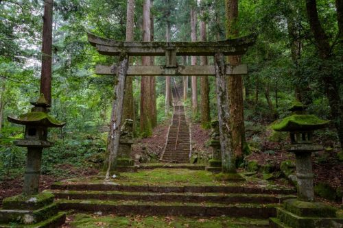 Scary-Places-in-Japan-The-Moss-Ridden-Taki-Shrine-007-1024x683.jpg