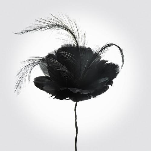f814-black_3.jpg